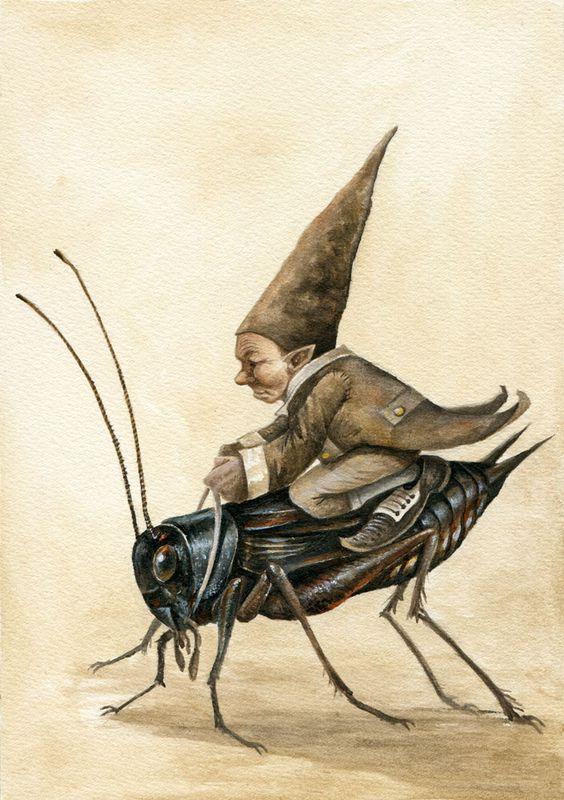 Crickt Rider